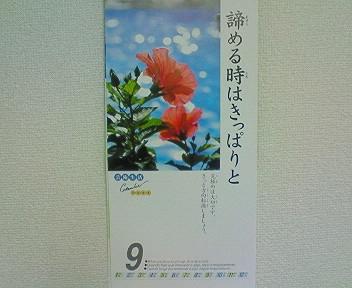 200801092026000.JPG